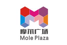 合肥话配音合肥摩尔广场广告片制作